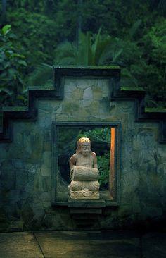 Bali / Nature / Rainforest