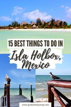 If Cancun, Mexico seems paradise to you, then you will be charmed with Isla Holbox! A short trip from Cancun that will capture your heart! Check out The Best Things To Do In Isla Holbox, Mexico | Amazing Things To Do In Isla Holbox | What o See, Eat, Buy In Isla Holbox | The Best Place To Stay In Isla Holbox, Mexico | 15 reasons to love Isla Holbox | The Best Places In Mexico You Must Visit | #Holbox #Mexico #beach #wildlife #TravelTips #holboxisland #islaholbox #MexicoTravel #holboxmexico Cozumel, Cancun Mexico, Mexico Vacation, Mexico Travel, Canada Travel, Travel Usa, Tulum, Latin America, South America