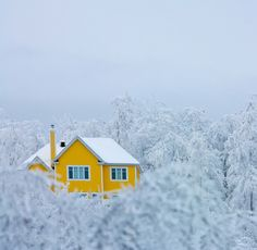 Yellow house dream house minimal snow winter season perfect home Yellow Houses, Yellow Submarine, Shades Of Yellow, Colour Yellow, Mellow Yellow, Mustard Yellow, Lemon Yellow, Happy Colors, Architecture