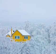 Yellow house dream house minimal snow winter season perfect home Yellow Houses, Yellow Submarine, Shades Of Yellow, Colour Yellow, Mellow Yellow, Mustard Yellow, Lemon Yellow, Happy Colors, Architecture