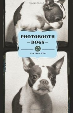 photobooth dogs, of course