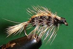OSD Spring Wiggler -http://www.michigan-sportsman.com/mscms/fishing-articles/osd-spring-wiggler-fly-pattern/