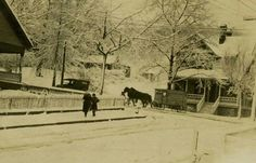 """Horse-drawn Biltmore Dairy wagon making deliveries on snow-covered Charlotte St., 1922."" Shared by Sandy Posey Banks on "" Asheville, the way it WAS "" Facebook page."