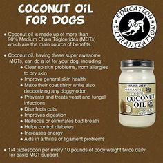 Nobody believes me. I give coconut oil to my furs everyday. No fleas. No harsh chemicals. No chemical pills to give them. Old achy bones feel better. Beautiful coats. Healthy digestion. I buy it at Walmart in the baking aisle where the cooking oils are. $7 for a nice big jar twice a month vs $100 a month for flea prevention.