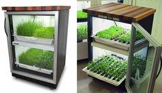 Urban Cultivator indoor garden blends seamlessly into your kitchen