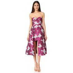 Black Halo Caine Dress ($570) ❤ liked on Polyvore featuring dresses, vanilla orchid, floral hi-low dresses, black halo dress, floral dresses, strapless hi-low dresses and floral print cocktail dress