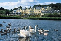 Arklow Bay Hotel - Wicklow An elegant seaside hotel nestled in the hills less than an hour from Dublin and easily accessible by road and train. Places Ive Been, Places To Go, Ireland Homes, Places To Get Married, Travel Memories, Travel Planner, Where The Heart Is, Dublin, Seaside