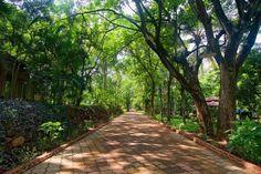 AI-DIY-Garden-Paths-31