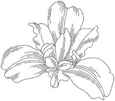 """Siberian Iris (from Pen & Ink Flowers) Perfect for combining with inks, paint, or colored pencils. Use it with the outline only version for """"shadow appliqué.""""   #machineembroidery #flower #redwork #floral"""
