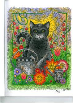 creative cats colouring book, I love cats :)
