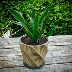 Parametric Planter by ML3DP  #practical