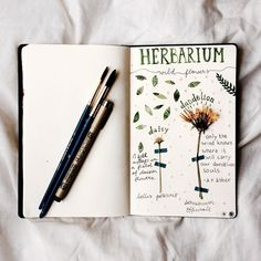 A DIY herbarium by Claire! Find her on Instagram as claire_water76 Creation Art, Creation Deco, Garden Journal, Nature Journal, Botanical Drawings, Botanical Illustration, Nature Crafts, Art Journal Inspiration, Book Of Shadows