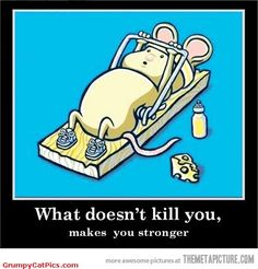 Life-Lesson-Number-1-Very-Cute-Mouse-Trap-Working-Fitness-Funny-Picture