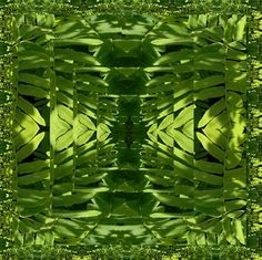 Framed Green Fantasy