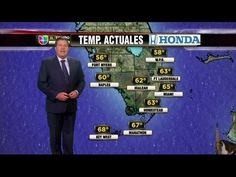 Forecast? Furry! Cat moseys through live weather report - The Clicker