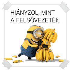 A minyonok üzennek nekünk! / Éva Magazin Minion Cookies, Geek Humor, Banana, Disney Characters, Fictional Characters, Geek Stuff, Funny, Cake, Blog