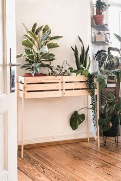 """Pflanzenständer oder auch Plant Stands sind momentan total im Trend. Entdecke den kreativen DIY Ikea-Hack von """"Sandrahomestory"""". Hier erfährst Du, wie du in 6 einfachen Schritten den Pflanzenständer aus den Obstkisten von Ikea nachbauen kannst. Setze deine Pflanzen kreativ und gekonnt in Szene!   (Bild via Sandrahomestory)"""