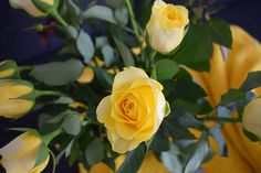 """""""Flowers grow back even after they're stepped on and so will you."""" #flowers"""