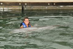 Swam with a dolphin