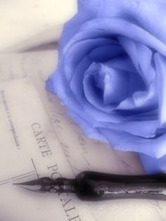 Raindrops and Roses Periwinkle Color, Purple, Indigo, My Favorite Color, My Favorite Things, Raindrops And Roses, Lavender Blue, Lilac, Color Themes