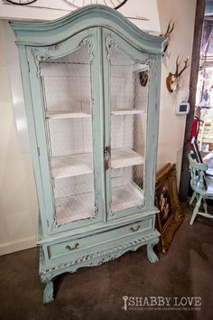 Duck Egg Blue Chalk Paint® with chicken wire replacing the glass!