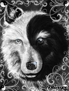 Wolf Yin Yang – lupus represented by wolf; yin-yang represents how i keep my life in balance despite the wolf. Yin Yang Tattoos, Wolf Tattoos, Female Tattoos, Cross Tattoos, Cat Tattoos, Maori Tattoos, Tattoo Cat, Dragon Tattoos, Snake Tattoo
