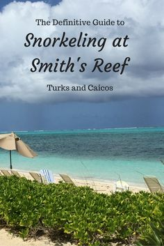 The Definitive Guide to Snorkeling at Smith's Reef in Turks and Caicos | tipsforfamilytrips.com
