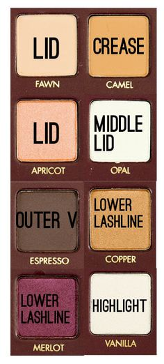 Warm and Toasty Fall with LORAC Mega Pro Palette - VanityRouge