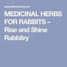 Free Rabbit Pedigree Template   BunnyTrade™   Rabbits   Pinterest ...