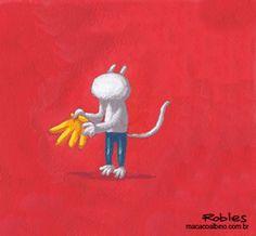 Macaco Albino: Macaco Albino: Gif animado!!