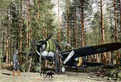 A Finnish Brewster Buffalo 239 fighter (BW-352) 24th June 1941 ...