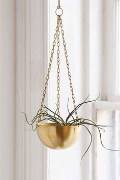 Hanging Metal Planter from Urban Outfitters. Shop more products from Urban Outfitters on Wanelo. Inexpensive Home Decor, Cute Home Decor, Stylish Home Decor, Cheap Home Decor, Metal Planters, Hanging Planters, Gold Planter, Hanging Terrarium, Window Hanging