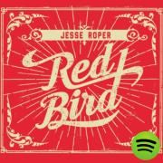 The Hurricane's Eye, a song by Jesse Roper on Spotify