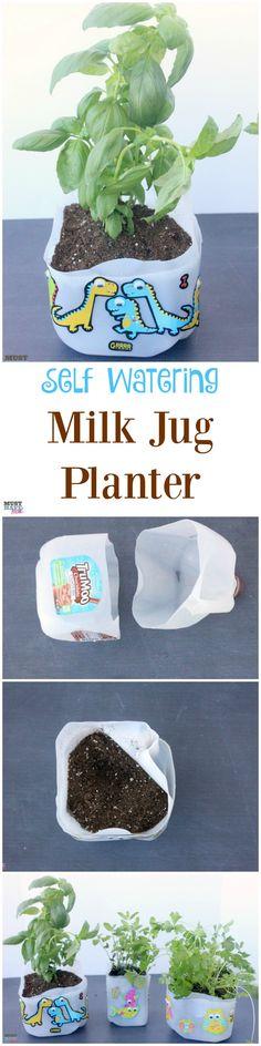 DIY Self Watering Milk Jug Planter Idea! Make your own self watering planter out of a milk jug. Upcycle and reuse your milk jug and get the kids involved! Milk jug gardening ideas!