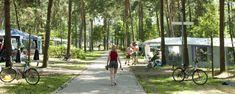 De camping is gelegen in een groene omgeving die uitnodigt tot fietsen en wandelen!  Je kan ook naar de zwemvijver of speeltuin, als je op vakantie bent op onze camping.