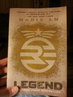 Liked Hunger Games and Divergent?  Check this book out!