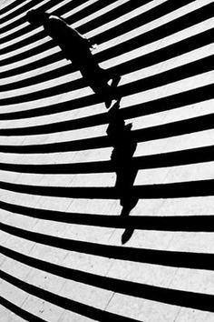 """Stripe"" by Go Muroiwa"