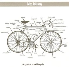 24 Best Anatomy of a bicycle images  8fb8fa1b0