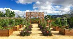 contemporary metal garden trellis에 대한 이미지 검색결과