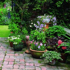 Container gardening.  Express yourself with containers of every size, shape & color for an easy & beautiful patio garden.