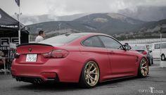 New BMW M4 sitting pretty.