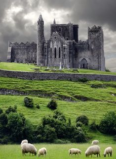 The Rock of Cashel, Ireland, via MANUELA COUTINHO