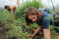 'Wwoofing' teaches urbanites countryside ways