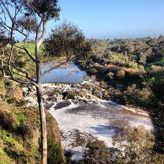 Buckley Falls Geelong #australia #geelong #geelongphotographer #destinationgeelong by carolynbphotography http://ift.tt/1JtS0vo