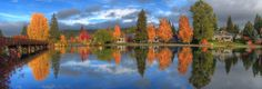 Fall Colors Refelecting in the Deschutes River at Drake Park Bend Oregon
