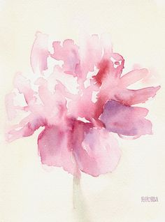 Pink Peony -  Watercolor Paintings Of Flowers Painting by Beverly Brown Prints