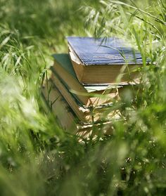 Ana Rosa, stack of books, grass
