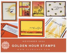 Rubber Stamping, Card Kit, Brighten Your Day, You Are Beautiful, Golden Hour, Scrapbook Pages, Envelope, November, You're Beautiful