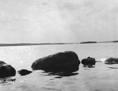 A conexão entre o ser humano e a natureza por Arno Rafael Minkkinen