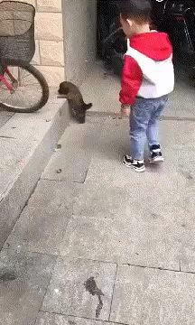 This Kid has been thought how to treat animals with care and compassion. I really love the way how carefully and calmly he acts with the Puppy. via aww on February 04 2019 at Animals For Kids, Animals And Pets, Funny Animals, Cute Animals, Animal Pictures, Cute Pictures, Baby Dogs, Dog Photos, Cute Kids